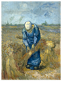 Vincent van Gogh (1853-1890) -Peasant woman binding sheaves (after Millet), 1889- Postcard