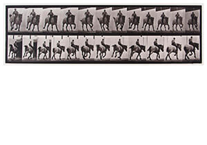 Eadward Muybridge(1830-1904) -Hansel, Gallop Bareback, Belgian Draught Horse- Postcard