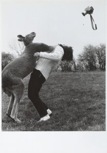 John Drysdale -Untitled- Postcard