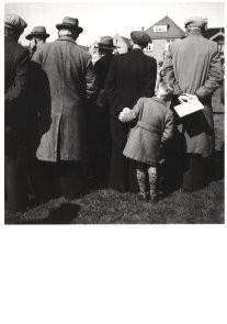 Kees Scheren (1920-1993) -Stierenkeuring Alkmaar- Postcard