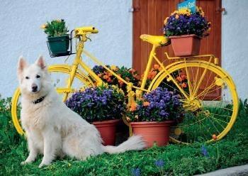 Marlies Terstegge -Dank voor de bloemen, 2010- Postcard
