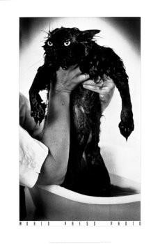 Jim McLagan -Drowned cat/40*60/D /WPP- Poster