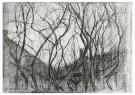 Piet Mondrian (1872-1944)  -  Studie van bomen, 1905 - Postcard -  1A00103-1