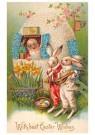 A.N.B.  -  Paashaasjes op bezoek - Postcard -  1C0910-1
