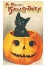 A.N.B.  -  Zwarte kat zittend in een pompoen (A merry Halloween) - Postcard -  1C1178-1