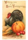 Anonymous  -  Wishing you a happy thanksgiving - Postcard -  1C1344-1