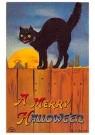 Anonymous  -  Zwarte kat (A merry halloween) - Postcard -  1C1349-1