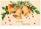 Anonymous  -  A bright new year - Postcard -  1C1704-1