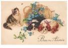 A.N.B.  -  Kat met twee honden (gelukkig nieuwjaar) - Postcard -  1C2210-1