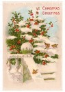 A.N.B.  -  Christmas greetings - Postcard -  1C2362-1