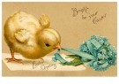 Anonymous  -  Bright be your easter - Postcard -  1C2455-1
