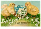 Anonymous  -  A glad eastertide - Postcard -  1C2457-1