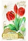A.N.B.  -  Birthday greeting - Postcard -  1C2473-1