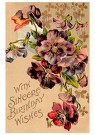 A.N.B.  -  With sincere birthday wishes - Postcard -  1C2476-1