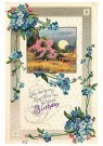 A.N.B.  -  A happy birthday - Postcard -  1C2479-1