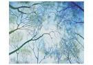 Kika Notten (1963)  -  The ripple effect - Postcard -  2C0004-1