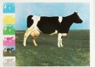 Jan Cremer (1940)  -  Nationale trots - Postcard -  A0089-1