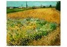Vincent van Gogh (1853-1890)  -  Wheatfield, 1888 - Postcard -  A103996-1