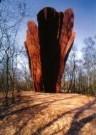 Rudi van de Wint (1942-2006)  -  View - Postcard -  A10578-1
