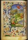 -  Trivulzio-Getjdenboek - Postcard -  A10685-1