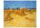 Vincent van Gogh (1853-1890)  -  Harvest in Provence, 1888 - Postcard -  A111096-1