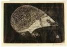 Jan Mankes (1889-1920)  -  Egel - Postcard -  A11125-1