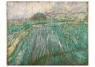 Vincent van Gogh (1853-1890)  -  Wheat Field in Rain, 1889 - Postcard -  A111362-1