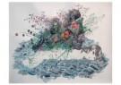 Minkim  -  Untitled - Postcard -  A11508-1