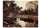 Eadward Muybridge(1830-1904)  -  Cottonwood Bend, Valley Of The Yosemite - Postcard -  A14207-1