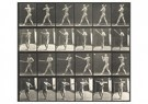 Eadward Muybridge(1830-1904)  -  Man Swinging A Baseball Bat - Postcard -  A14218-1