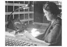 Lewis Hine(1874-1940)  -  Testing Bulbs - Postcard -  A16647-1