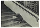 Lewis Hine(1874-1940)  -  Newsie Asleep On Stairs - Postcard -  A16731-1