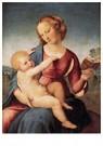 Raphaël Sanzio (1483-1520)  -  Colonna Madonna - Postcard -  A19998-1