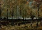 Vincent van Gogh (1853-1890)  -  Populierenlaan bij Nuenen - Postcard -  A2633-1