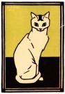 Julie de Graag (1877-1924)  -  Witte kat, 1917 - Postcard -  A2991-1