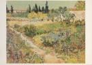 Vincent van Gogh (1853-1890)  -  Tuin te Arles - Postcard -  A3126-1