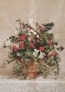 -  Rood-wit kerstbloemstuk in terracotta tuinvaas - Postcard -  A3648-1