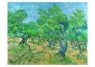 Vincent van Gogh (1853-1890)  -  Olijfgaard / Olive-grove, 1889 - Postcard -  A4411-1