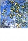 G.A. Savinov (1915-2000)  -  A.Savinov/Late Apples - Postcard -  A5822-1