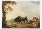 Hendrik Voogd (1768-1839)  -  H.Voogd/Stier + hond/BvB - Postcard -  A6495-1
