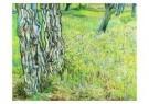Vincent van Gogh (1853-1890)  -  Gras en bloemen - Postcard -  A6527-1