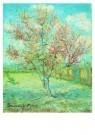 Vincent van Gogh (1853-1890)  -  Bloeiende bomen - Postcard -  A6530-1