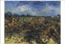 Vincent van Gogh (1853-1890)  -  Wijngaard - Postcard -  A6535-1