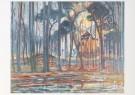 Piet Mondrian (1872-1944)  -  Bos bij Oele - Postcard -  A6619-1