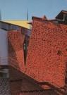 Ralph Richter  -  Exterieur met blik op tore/GrM - Postcard -  A6868-1
