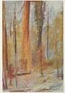 Wolf Kahn (1927)  -  Kahn, W./Mariposa Grove. - Postcard -  A7493-1