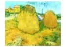 Vincent van Gogh (1853-1890)  -  Hooimijten - Postcard -  A7573-1