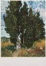 Vincent van Gogh (1853-1890)  -  Cypressen met twee vrouwenfiguren - Cypresses with - Postcard -  A7581-1