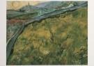 Vincent van Gogh (1853-1890)  -  Veld met jong koren bij opgaande zon - The enclose - Postcard -  A7584-1
