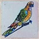 Anoniem  -  Spijkertegel met vogel. - Postcard -  A7862-1